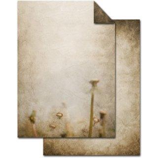Vintage Briefpapier DIN A4 braun beige - Druckerpapier beidseitig bedruckt - Motiv Pusteblume