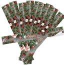 Geschenkschachteln in braun + FROHE WEIHNACHTEN Aufkleber braun rot grün - unterschiedliche Kartongrößen